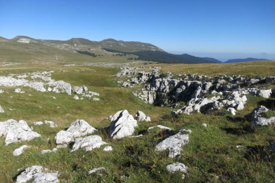 Pendant la traversée du plateau karstique de Font d'Urle