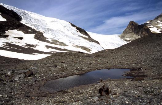 Le glacier du Pelve vu depuis les lacs de Chasseforêt