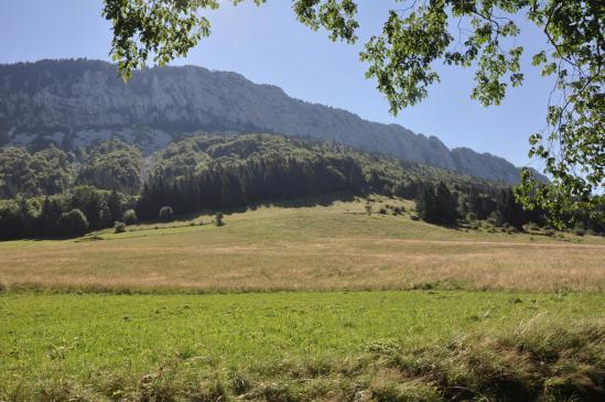 Dans la vallée de Rencurel