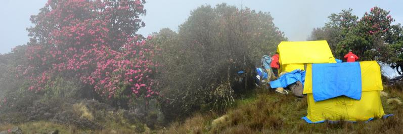 Sur la Kharpu danda, les après-midi peuvent être (très...) humides