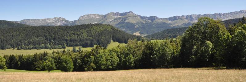 Le panorama sur les remparts E du Vercors depuis Haut Méaudret