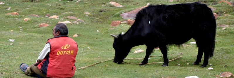Skyinling : Zorro avait bien un compagnon, alors pourquoi pas lui...
