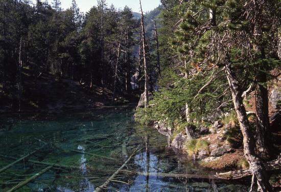 Vallée Etroite : le lac Vert (fluo...)