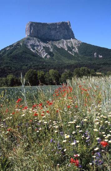 Le Mont-Aiguille sous son plus beau profil vu de la route entre La Richardière et Chichilianne