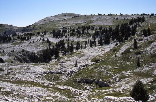 Sur les crêtes de la Montagne du Glandasse