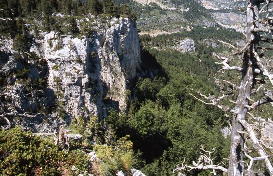 Au cours de la descente vers Benevise