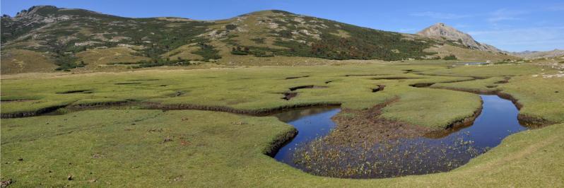Les pozzi du lac de Nino