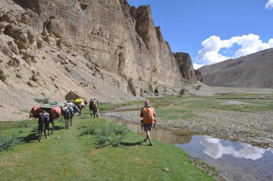 La vallée de la Zara Chu entre Yakru et Sangtha (Zabuk Yogma)