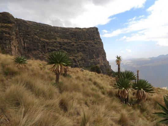 Avec un peu de recul, on peut encore mieux apprécier la grandeur de la falaise de l'Imet Gogo