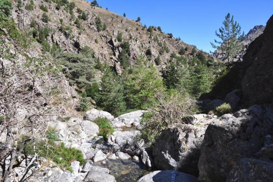 Remontée du vallon de Pinara