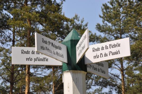 Carrefour de pistes au coeur de la forêt d'Ermenonville