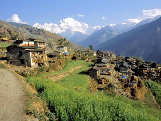 Le village de Jhi (le Dhaulagiri I ferme la vallée)