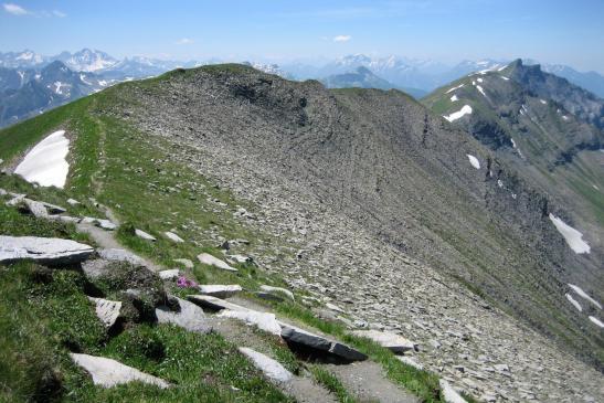 Vue arrière sur la crête du Mont Joly (le Beaufortain est à l'horizon)