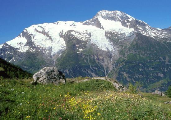 Vous aurez bien l'opportunité de venir au Monal pour déguster cette sublime vue du Mont Pourri, non ?