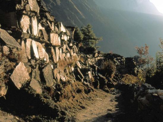 Mur de manis à Lhogaon