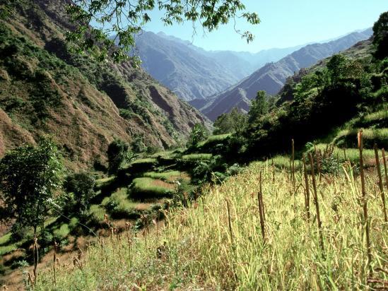 La vallée de la Monjor khola du côté de Chalise