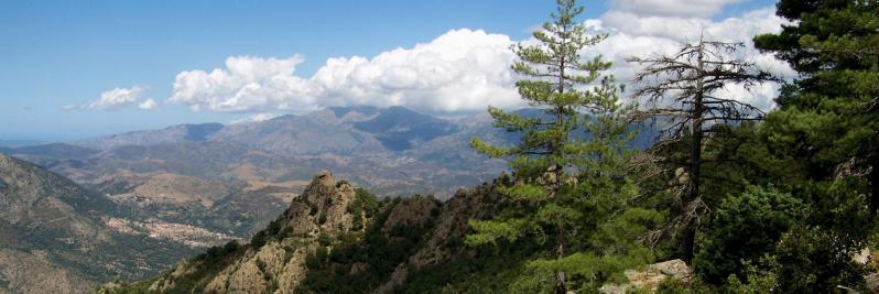 Sur le sentier de montée à la bergerie de Bradani