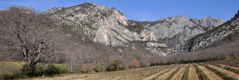Drôme - Saoû (le Pas de Lestang)