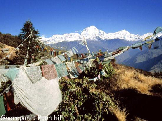 Depuis Poon hill on dispose d'une vue sans obstacle sur le Dhaulagiri I et ses satellites