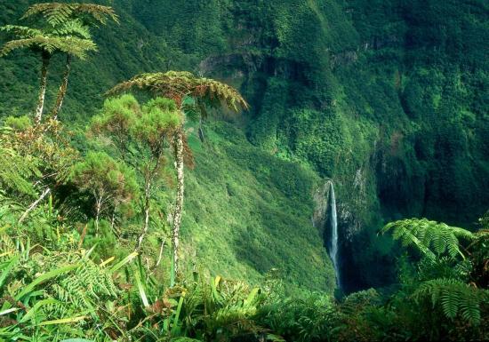 Le Trou de Fer (forêt de Bélouve)